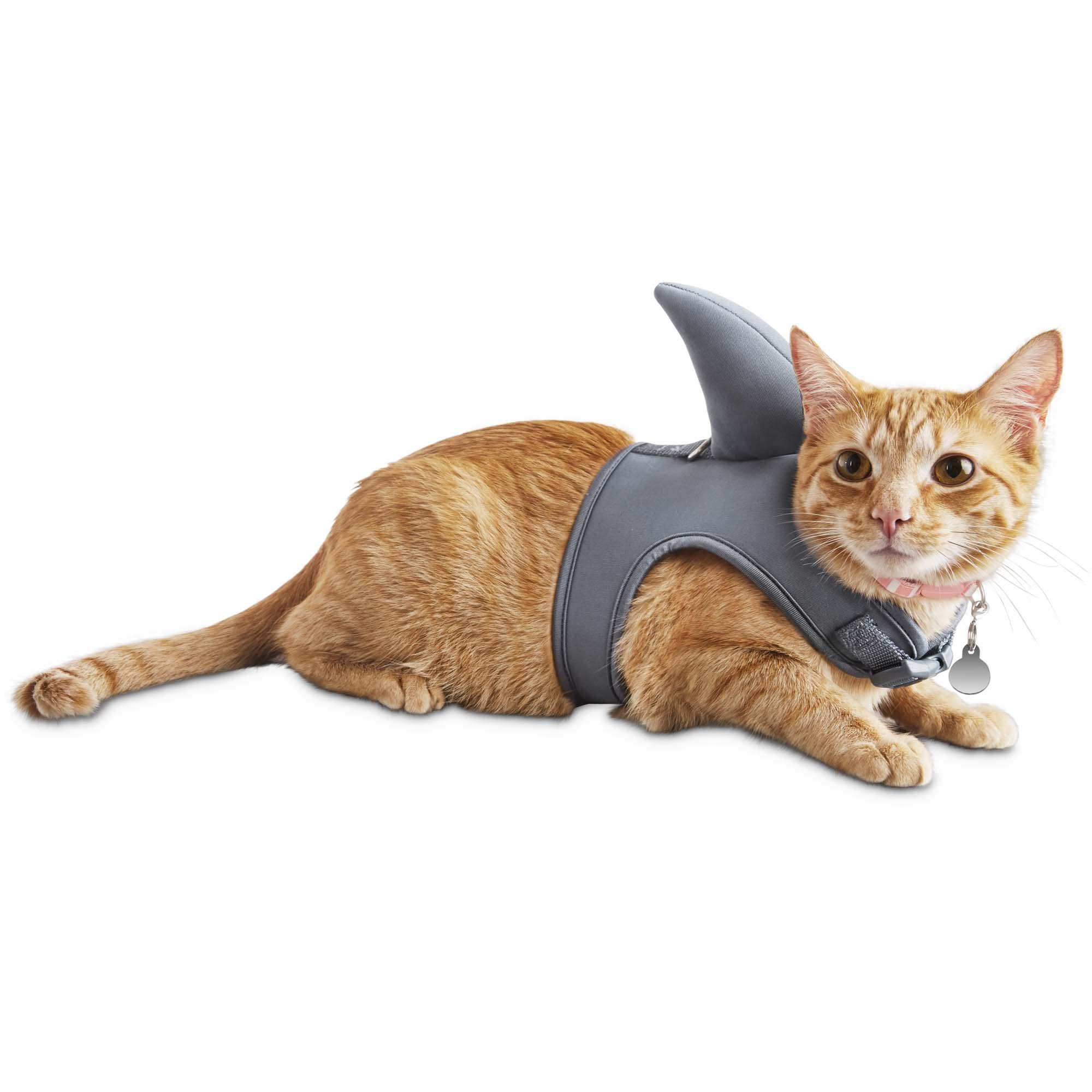 Tag And Lead Your Fierce Kitty With The D Ring On The Seaside Summer Shark Cat Harness A Buckle Snap And Adjustable Velcro Closures Cat Harness Kittens Doggy