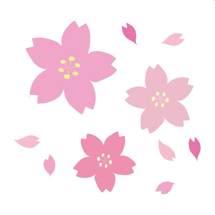 商用可!おしゃれで綺麗な 桜(サクラ)の無料(フリー)イラスト素材 ...