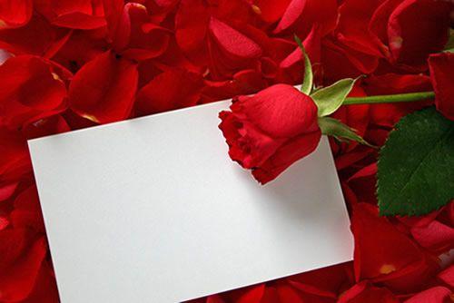 imagens românticas - Bing Imagens