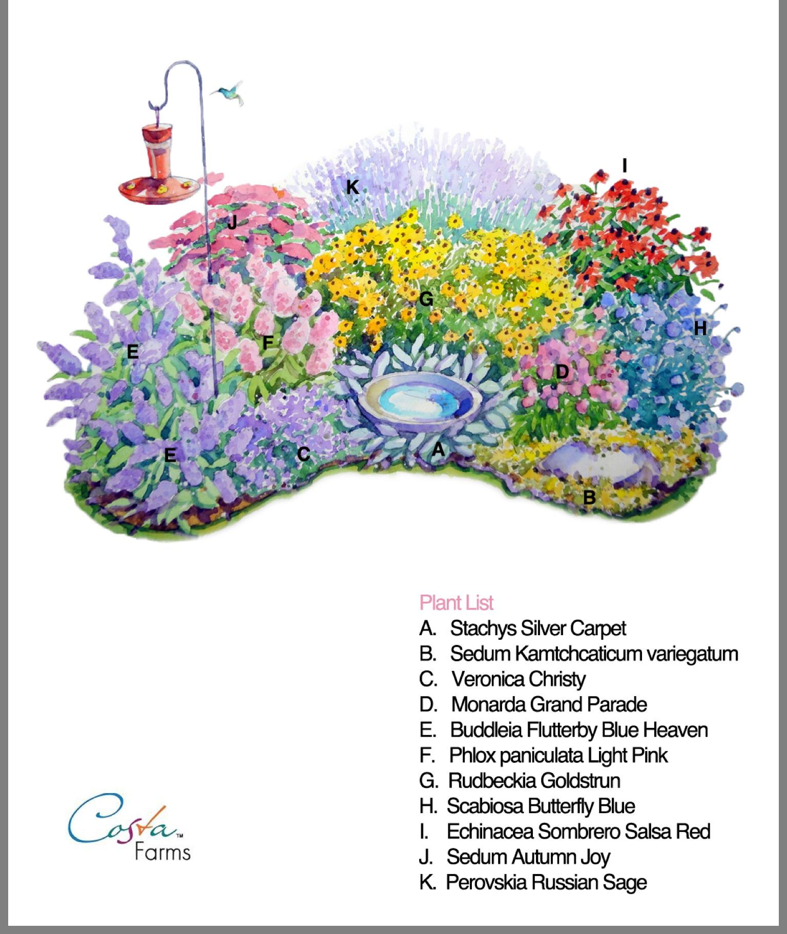 Pin By Jessica Flasch On Gardening Perennial Garden Plans Flower Garden Plans Butterfly Garden Design