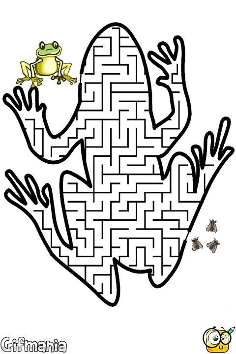 Help this frog to go across the maze in our activity page