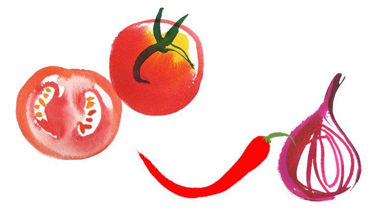 Marks & Spencers: Food Labels, illustration by Lara Harwood