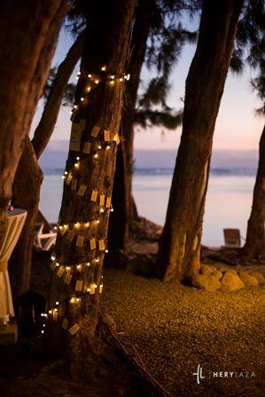 escort cards autour d 39 un arbre avec une guirlande lumineuse. Black Bedroom Furniture Sets. Home Design Ideas