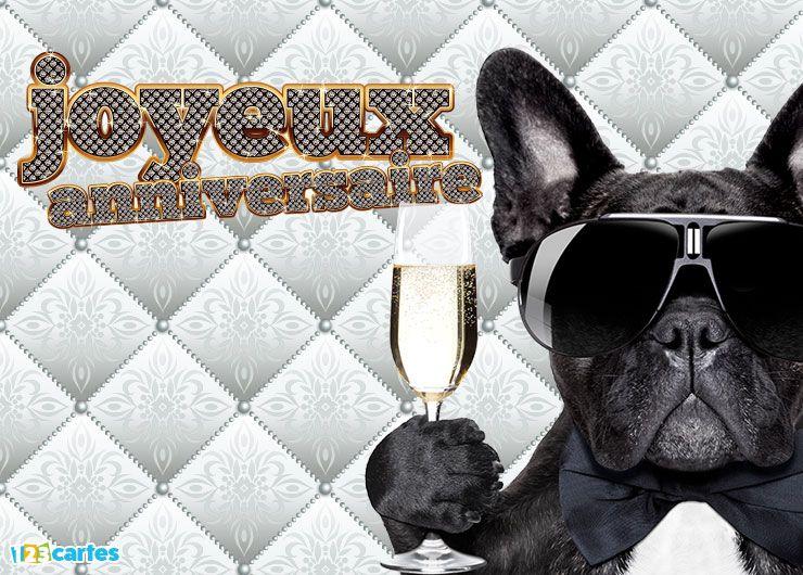 carte anniversaire chien humoristique