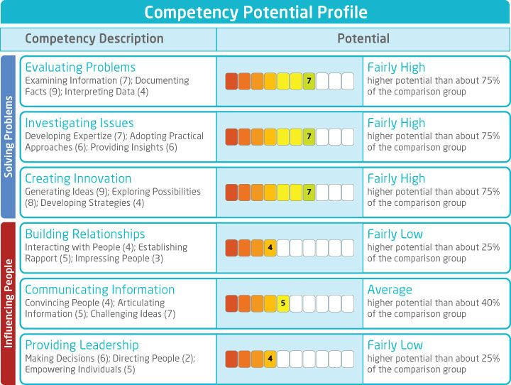 Saville Consulting Wave Line Manager Competency Potential