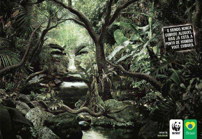 #WWF - O Mundo Nunca Cobrou Aluguel, mas Está a Ponto de Mandar Você Embora.