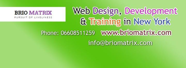 Best Web Design Classes In New York Nyc Web Design Class Web Design Web Design Training