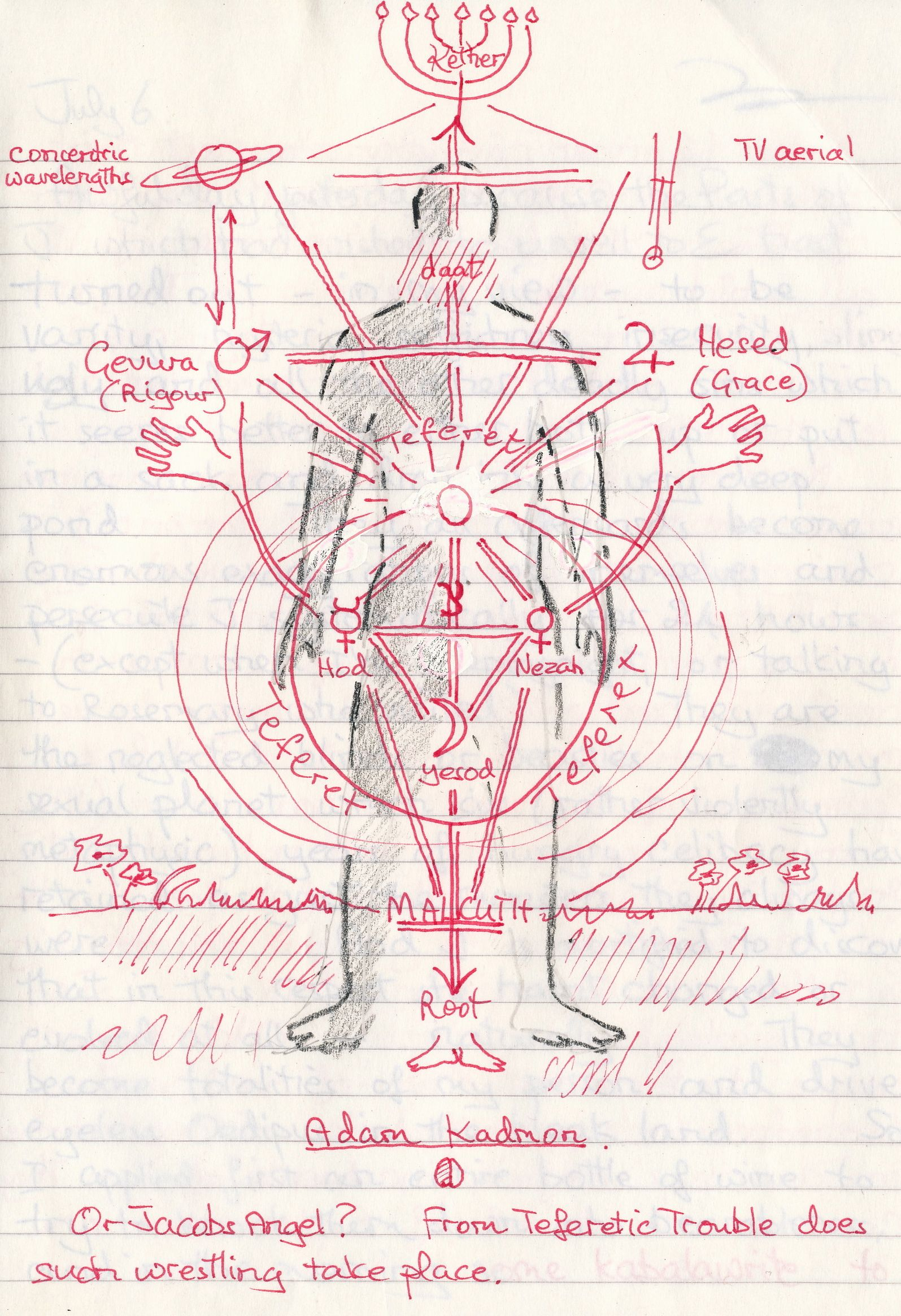 medium resolution of just remember that the tree of life maps on the back of the body not the front as in this diagram