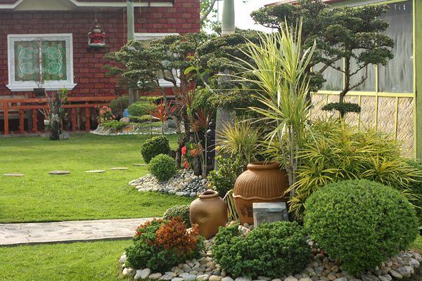 Villa landscape t m v i google garden pinterest for Landscaping plants in the philippines