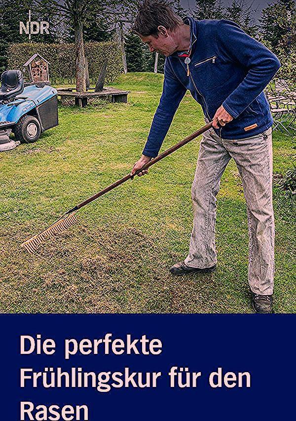 Photo of Rasen im Frühling düngen und pflegen