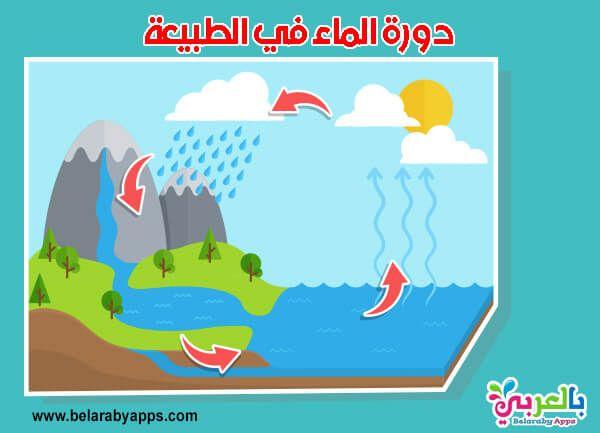بحث عن الماء خطوات عمل بحث مدرسي لطلاب الإبتدائي بالعربي نتعلم Fictional Characters Character Family Guy