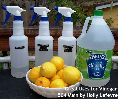 504 Main by Holly Lefevre: How I Clean Naturally with Vinegar