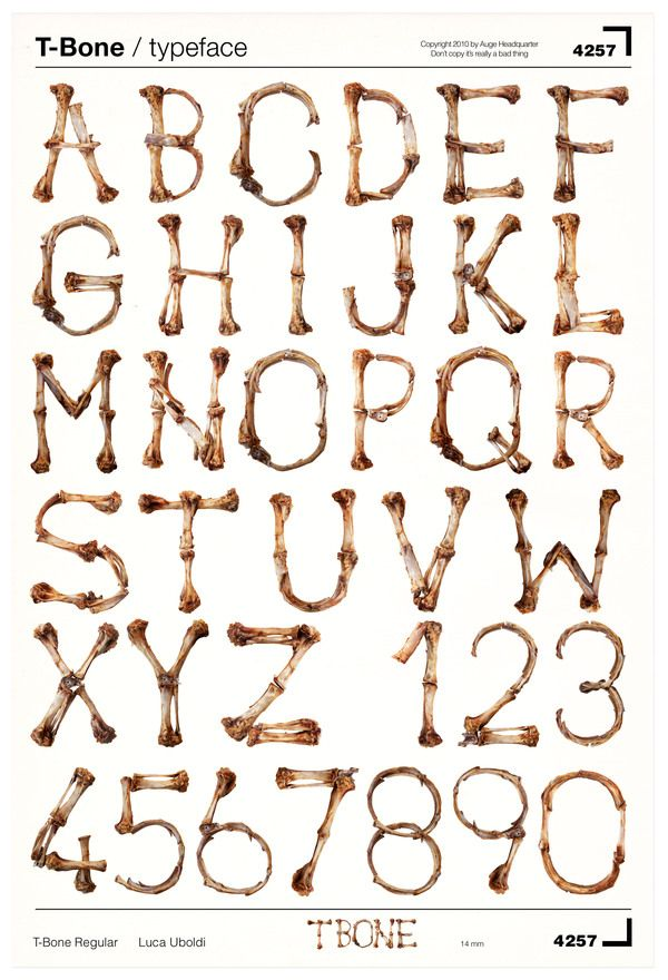 T-BONE / TYPEFACE by Luca Uboldi, via Behance.  Note how Luca Uboldi has created this font with tactile materials (bone) based on the structure of an existing typeface.