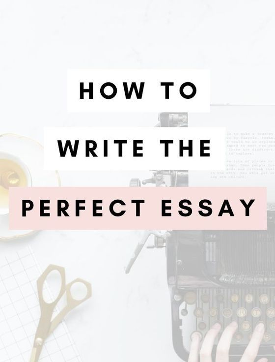 The Cat Essay  Essays On Reality Tv also Apply Texas Essays Topics Buy Essay Online  From Professional Writers At Essayyoda  Essay Examples About Life