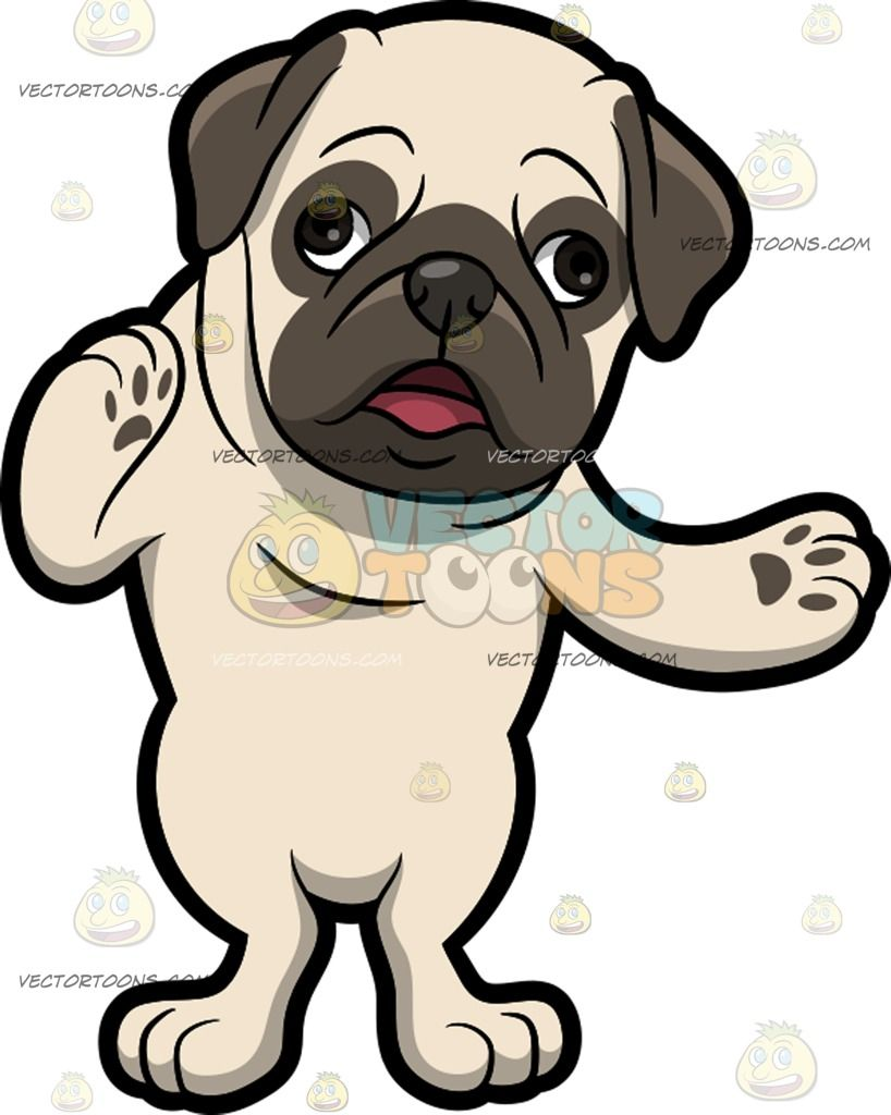 A Pug Making A Point :  A cute dog with an off white short fur dark gray droopy ears muzzle and circle around the eyes raising both front paws sideways while speaking  The post A Pug Making A Point appeared first on VectorToons.com.