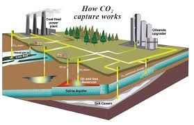 Image result for carbon capture and storage