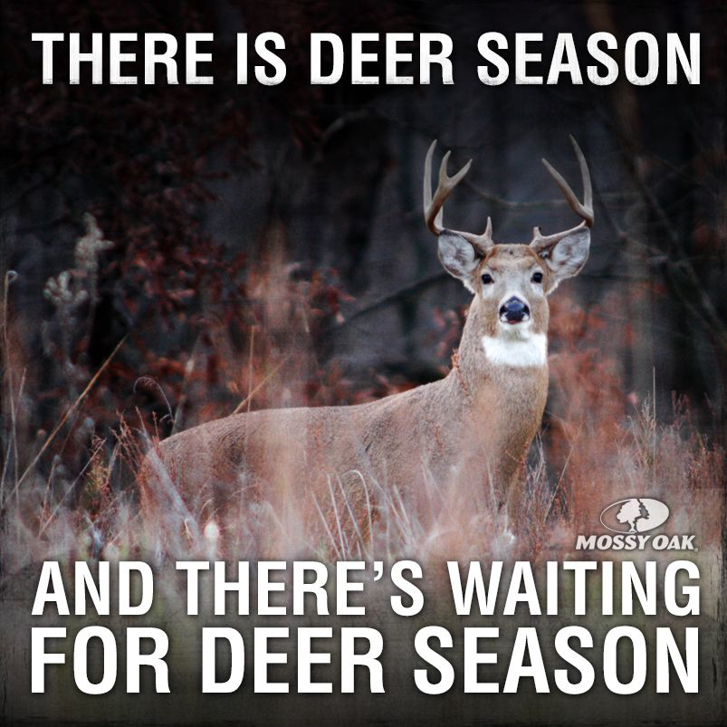 There Are Two Seasons Deer Season And Waiting For Deer Season Hunting Deer Season Hunting Humor