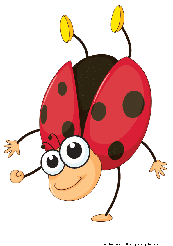 Mariquita para imprimir matematicas pinterest mariquita insectos y dibujos infantiles - Fotos de insectos para imprimir ...