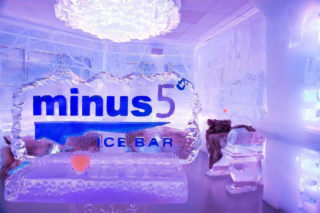 Minus 5 Ice Experience NY