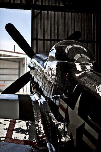 Nice shot of a cherished P-51 Mustang..lovelovelove