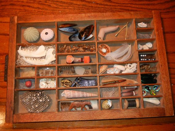 Specimen box. This Etsy seller has some cool stuff