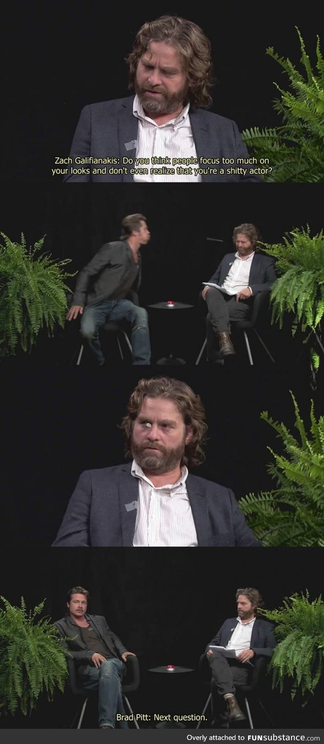 quotbetween two fernsquot with zach galifianakis and brad pitt