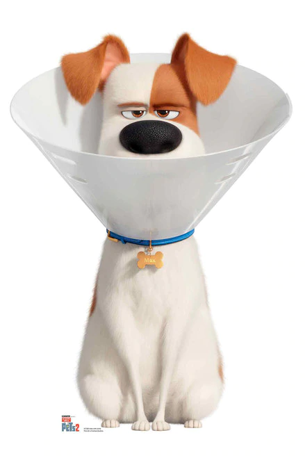 The Secret Life Of Pets 2 2019 Hindi 3d Dual Audio 1080p Bluray 1 3gb Download Secret Life Of Pets Secret Life Family Movie Night