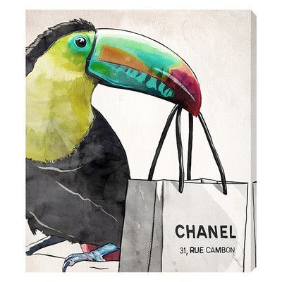 """House of Hampton French Toucan Graphic Art on Wrapped Canvas Size: 20"""" H x 17"""" W x 1.5"""" D"""