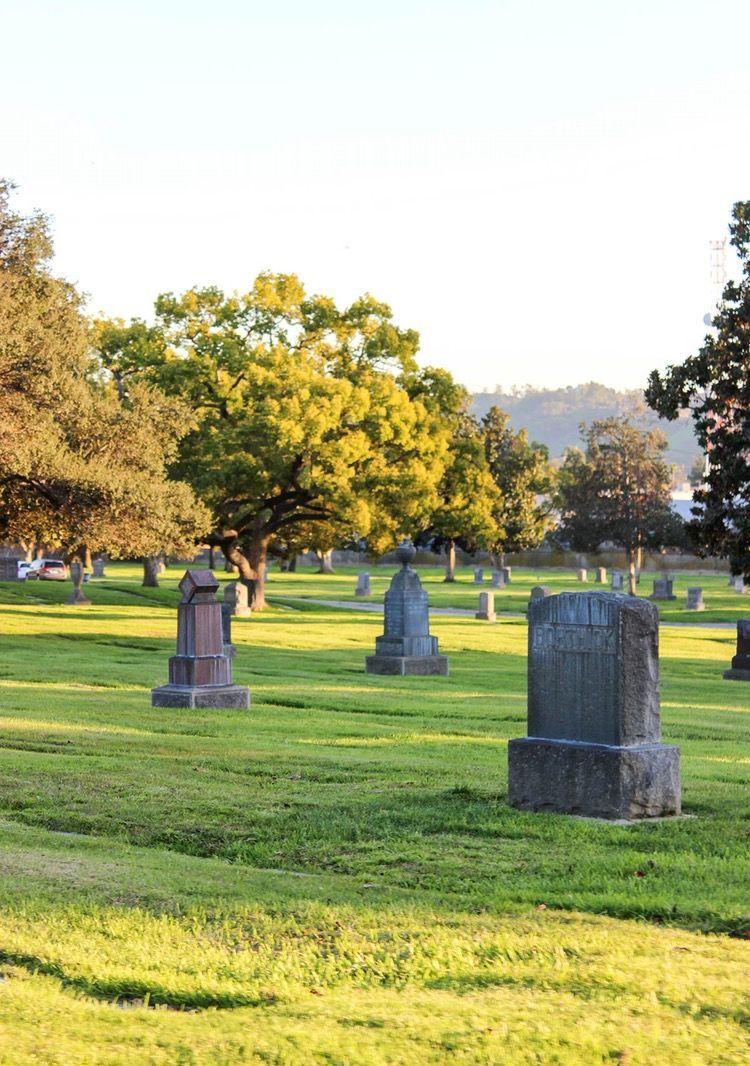 f2463588471b11e96fbd08149b8da54a - Buderim Lawn Crematorium And Memorial Gardens