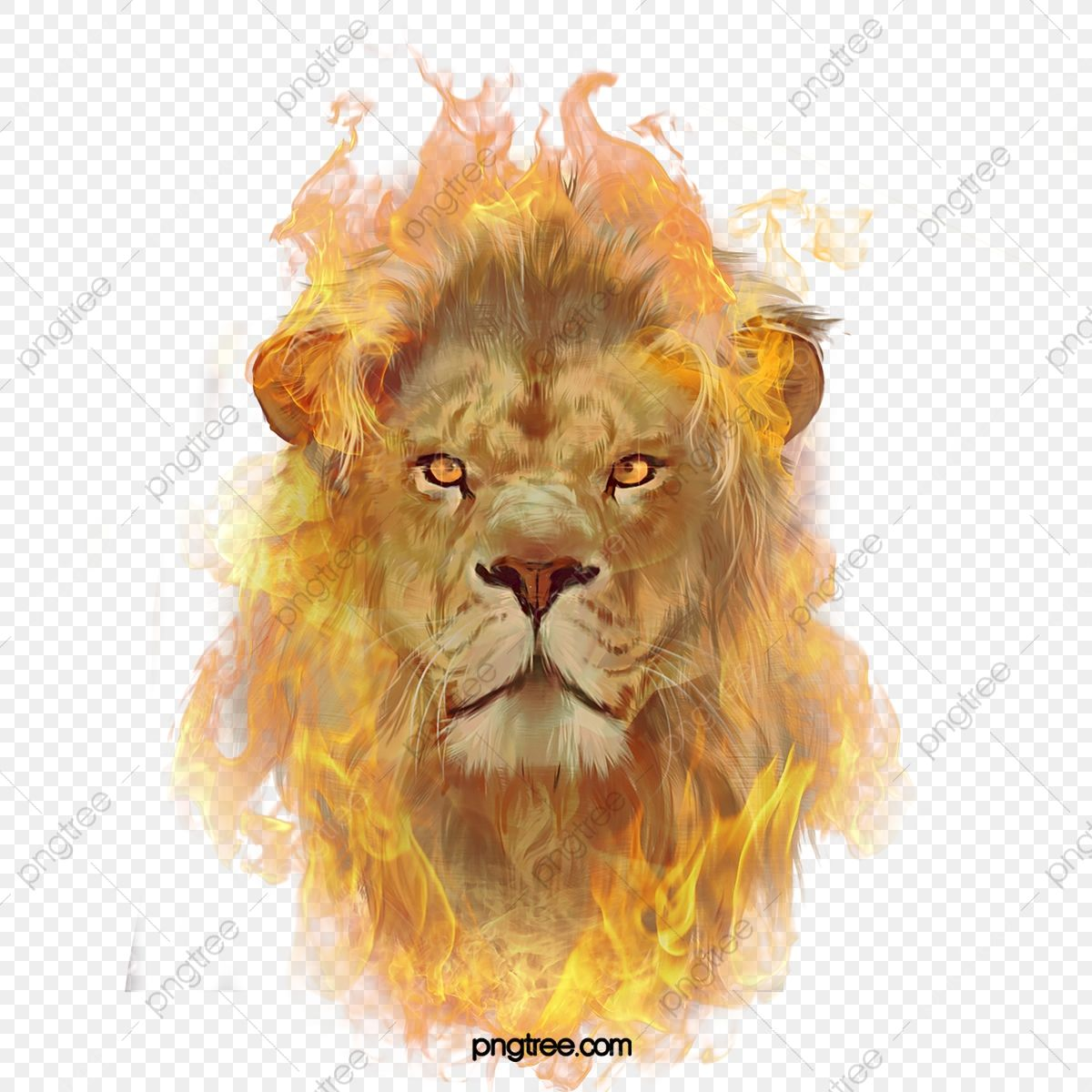 Flame Lion Combustion Illustration Elements Lion King Clipart Ferocious Hand Painted Png Transparent Clipart Image And Psd File For Free Download Lion Illustration Fire Icons Blur Background In Photoshop