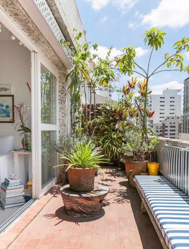 Photo of These 14 Balcony Gardens Have Us Ready for Spring