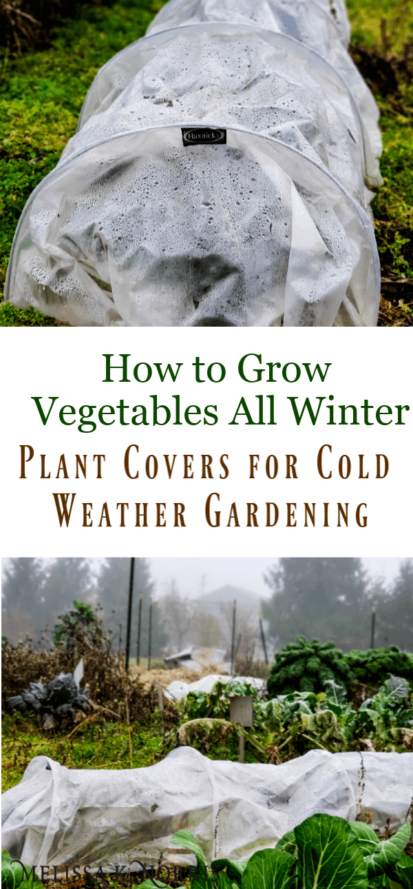Garden Plant Covers