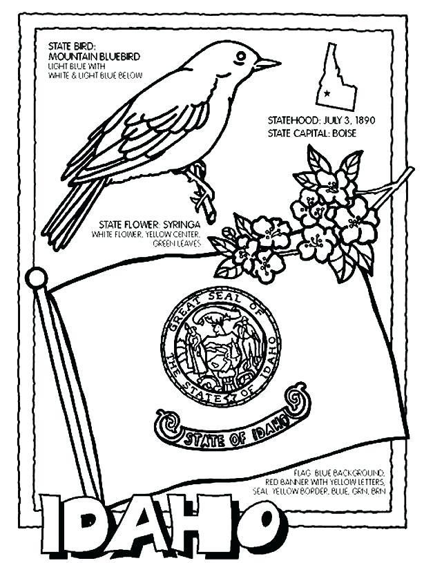 New York State Symbols Coloring Pages Flower Page Rose Flag For Kids
