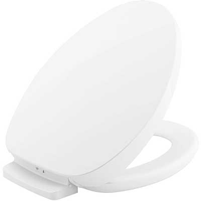 Top 10 Best Heated Toilet Seats In 2020 Reviews With Images