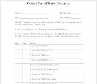 Informal Basic Concept Assessment  Therapy Ideas