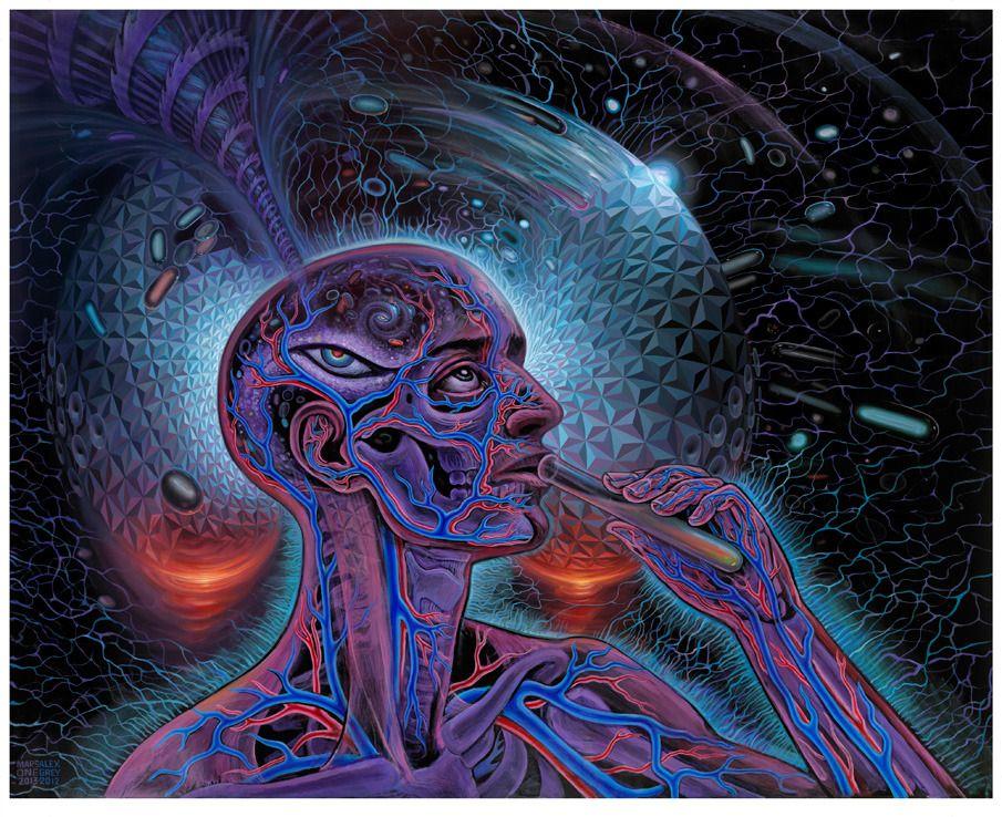 Psychedelic Spirit Paintings Alex Grey Art Gallery Alex Gray