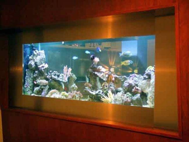 50 beautiful fish aquarium designs - Fish Tank Designs My Home