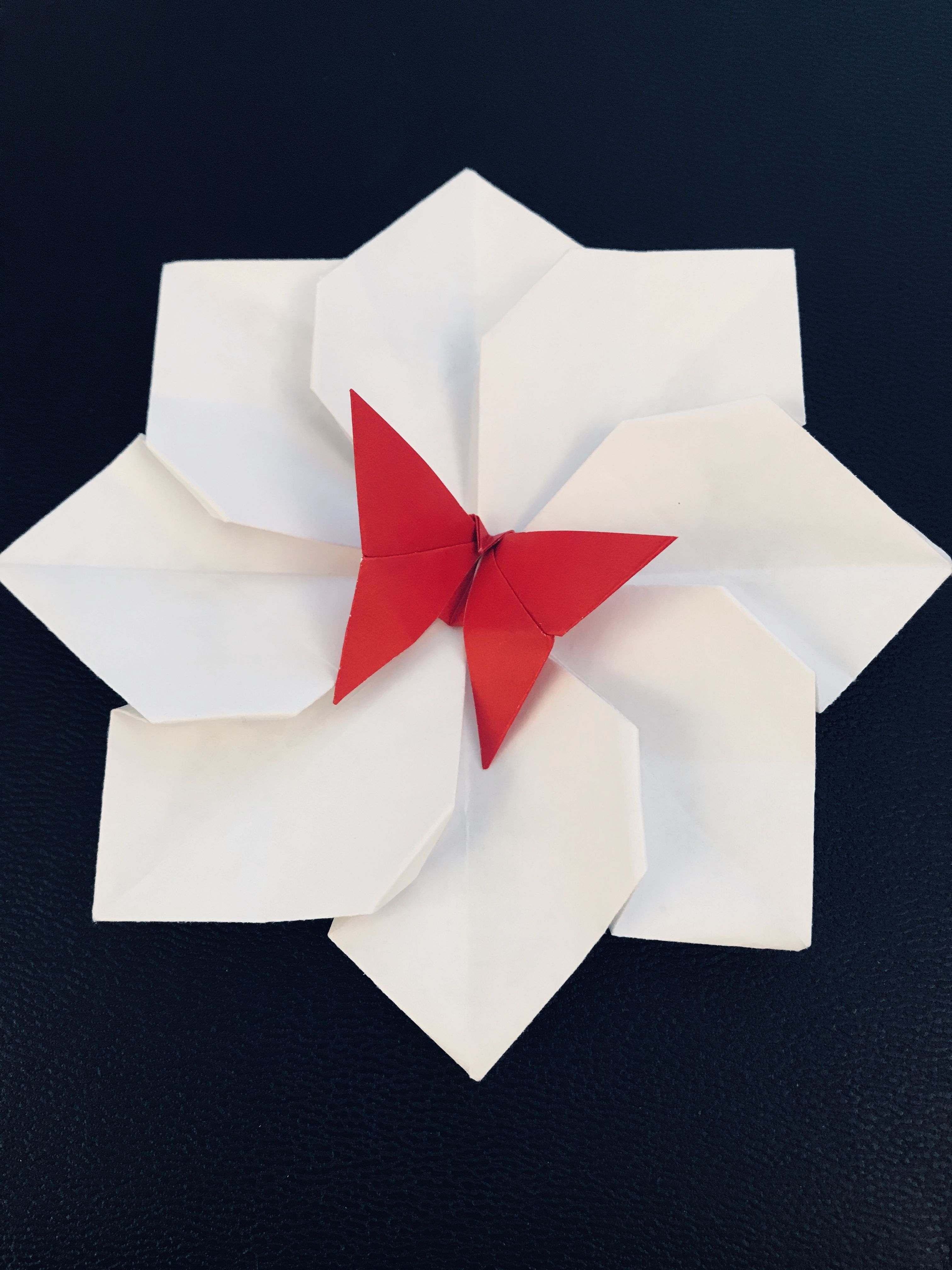 Origami Lotus Flower With Red Butterfly For Good Luck Origami Lotusbloem