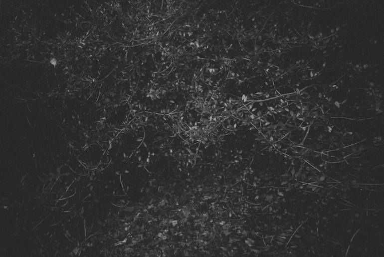 Buy From Night A Black Amp White On Paper By Pierre Debroux From Belgium It Portrays Landscape Re Dark Landscape Black And White Landscape Conceptual Art