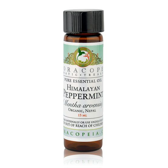 Himalayan Mint Essential Oil Floracopeia Essential Oils Mint Essential Oil Healing Essential Oils