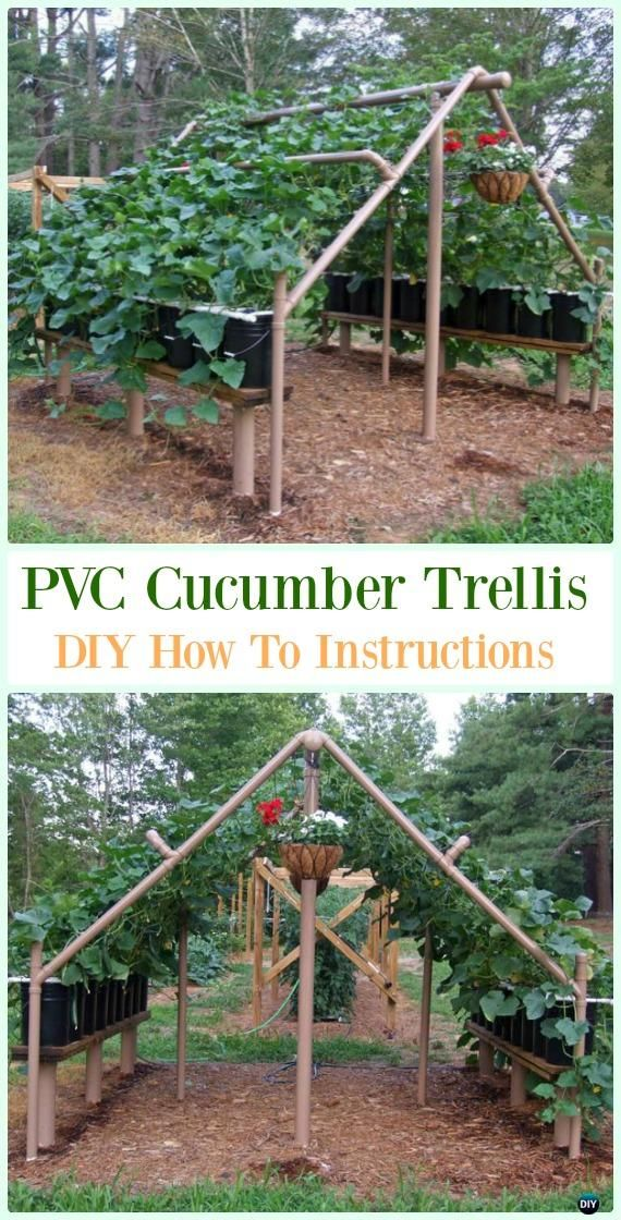 DIY PVC Garden Projects is part of Cucumber trellis diy - DIY PVC Garden Projects Instructions  PVC Gardening ideas from green house, PVC trellis, PVC Planter, Vertical Garden and more
