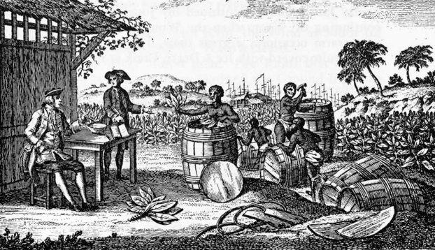 tobacco farming slavery - Google Search | History nerd ...