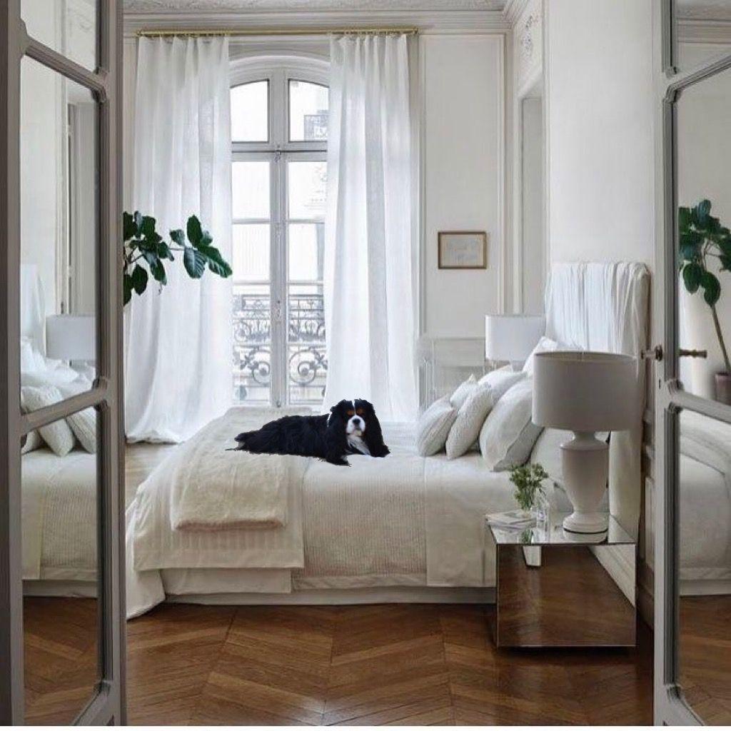 J'ai choisi ce lit parce que il est très parisien.