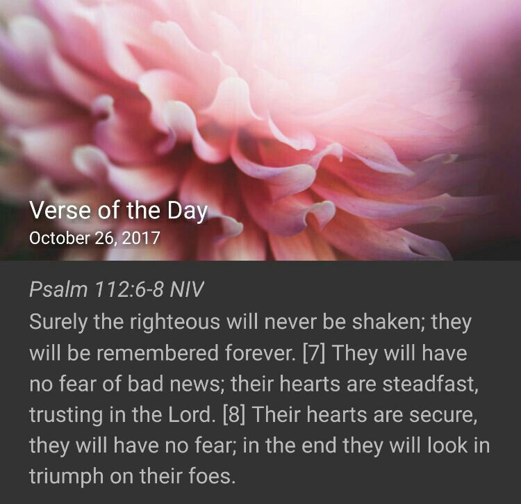 Glory be to GOD!#NIVtecartaBible  | Verse of the day, Psalms ...