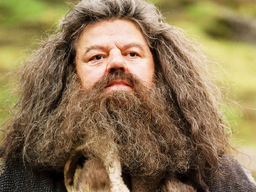 Rubeus Hagrid Wallpaper