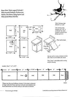 Warbler bird house plans