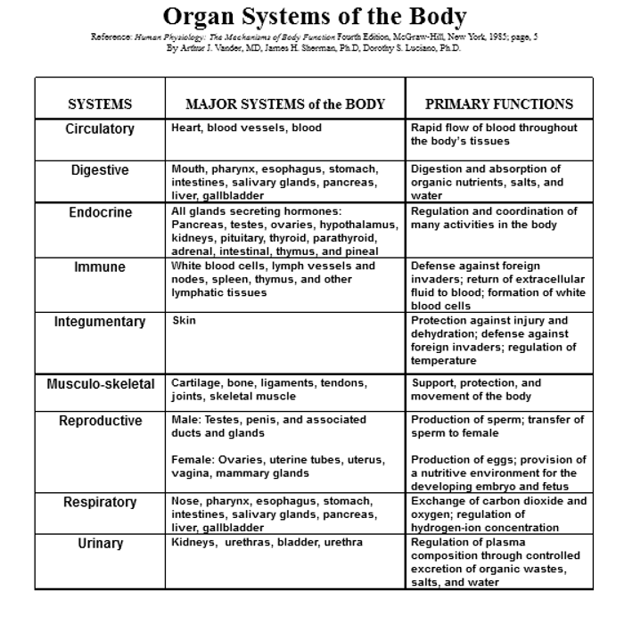 Apostolic Systems