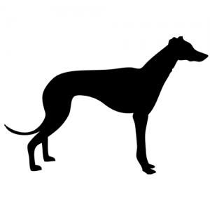 Greyhound Decal, Dog Park Publishing