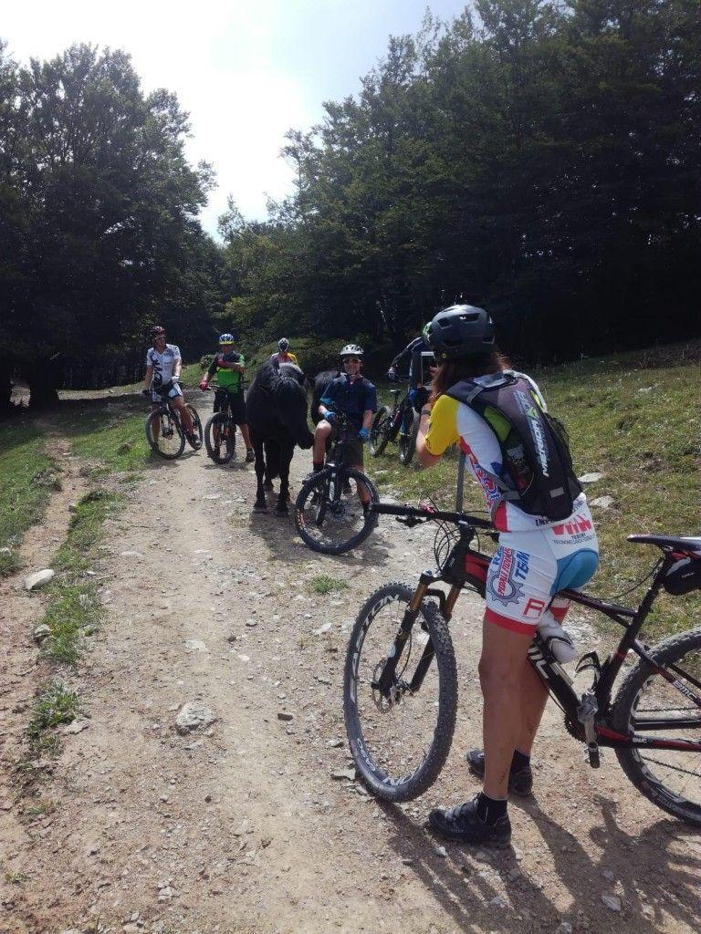 Emilia Romagna per escursioni in