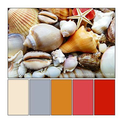 Decorating Inspiration - Shell Tones